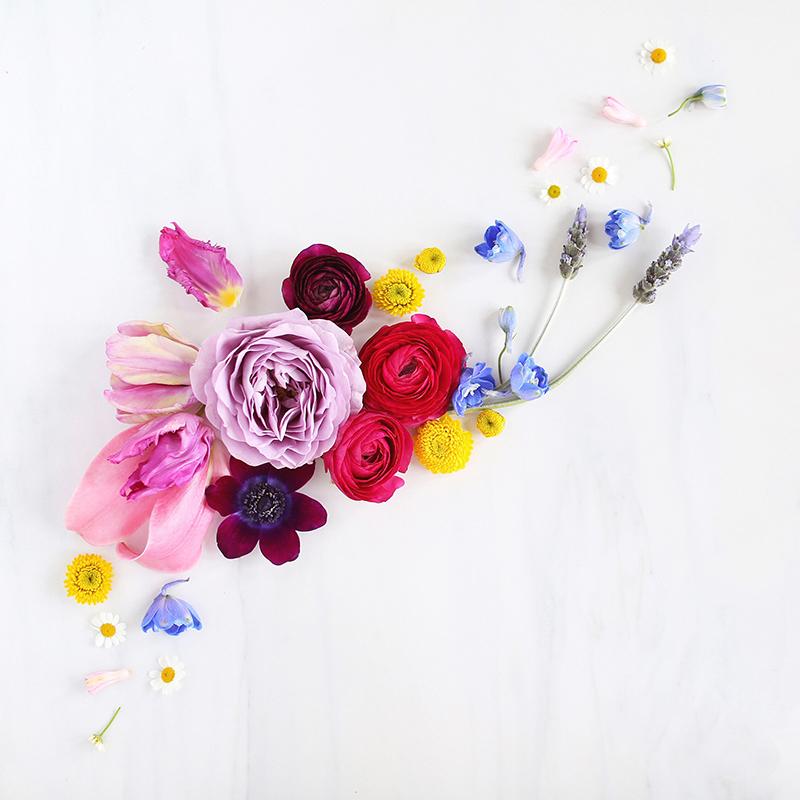 Digital blooms march 2018 free desktop wallpapers - March desktop wallpaper ...
